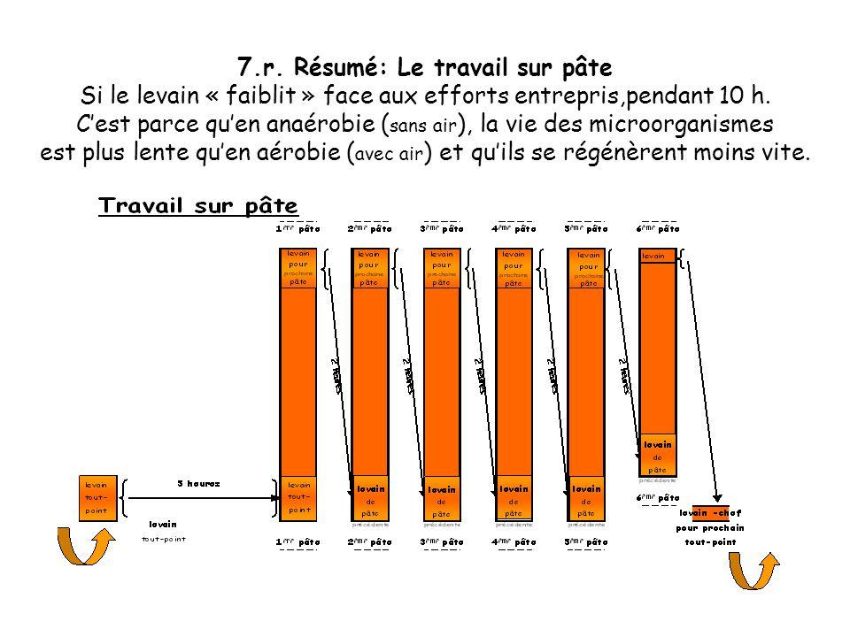 7.q. Le travail sur pâte ou levain de pâte Après 5 ensemencements de pâte assez proches,le 6 ème reste de la même proportion mais pour moins de pâte.