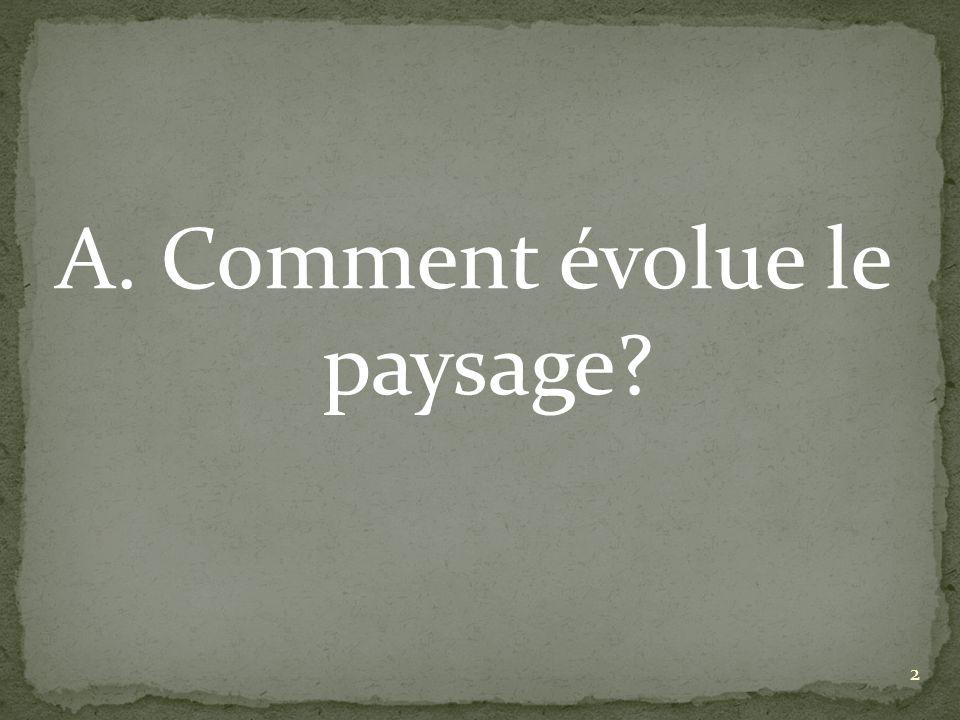 A. Comment évolue le paysage? 2