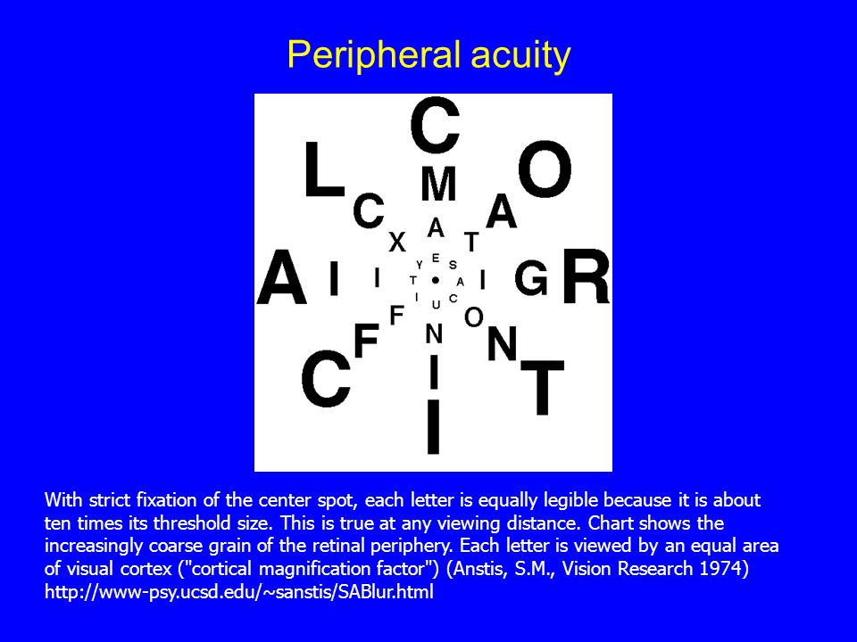 Peripheral acuity With strict fixation of the center spot, each letter is equally legible because it is about ten times its threshold size.