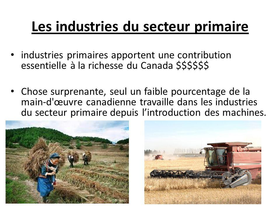 Les industries du secteur primaire industries primaires apportent une contribution essentielle à la richesse du Canada $$$$$$ Chose surprenante, seul un faible pourcentage de la main-d œuvre canadienne travaille dans les industries du secteur primaire depuis lintroduction des machines.