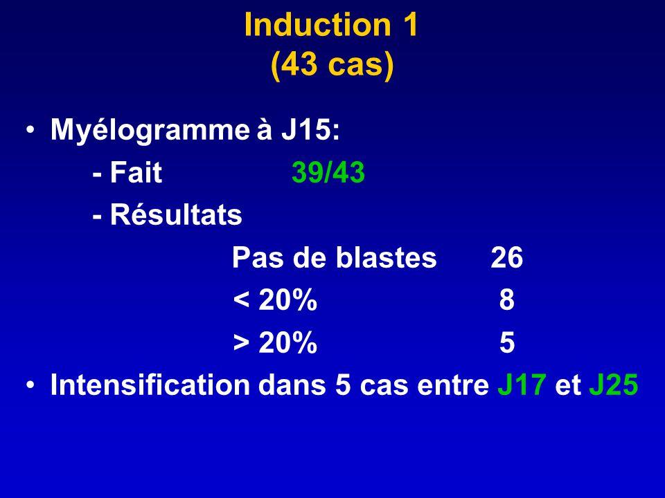 Induction 1 (43 cas) Myélogramme à J15: - Fait39/43 - Résultats Pas de blastes 26 < 20% 8 > 20% 5 Intensification dans 5 cas entre J17 et J25
