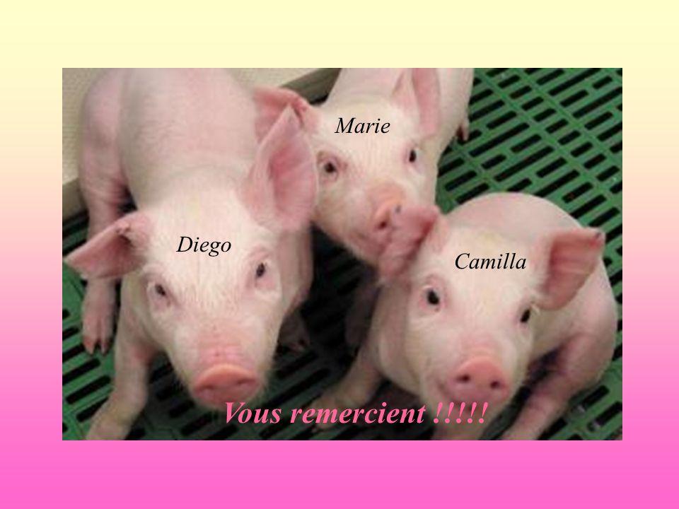 Diego Marie Camilla Vous remercient !!!!!