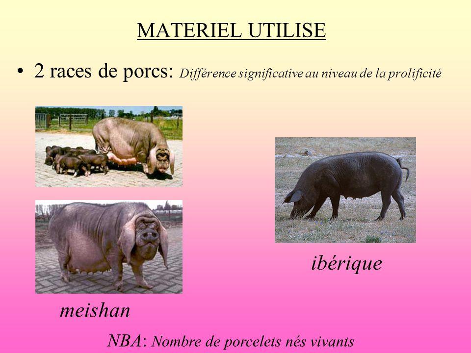 MATERIEL UTILISE 2 races de porcs: Différence significative au niveau de la prolificité meishan ibérique NBA: Nombre de porcelets nés vivants