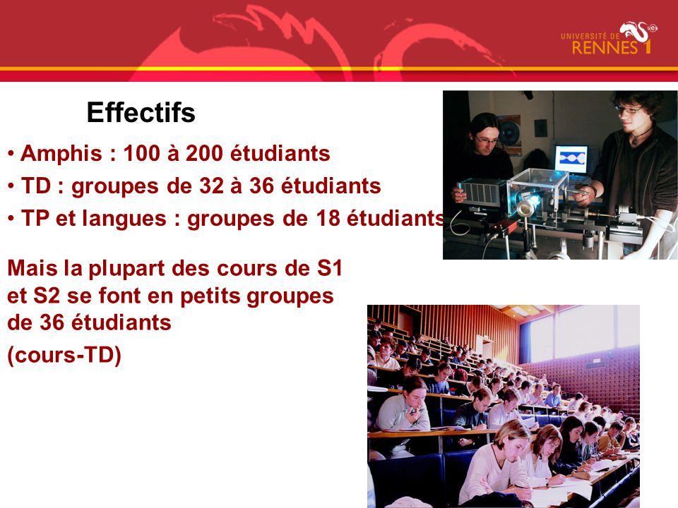 Effectifs Amphis : 100 à 200 étudiants TD : groupes de 32 à 36 étudiants TP et langues : groupes de 18 étudiants Mais la plupart des cours de S1 et S2