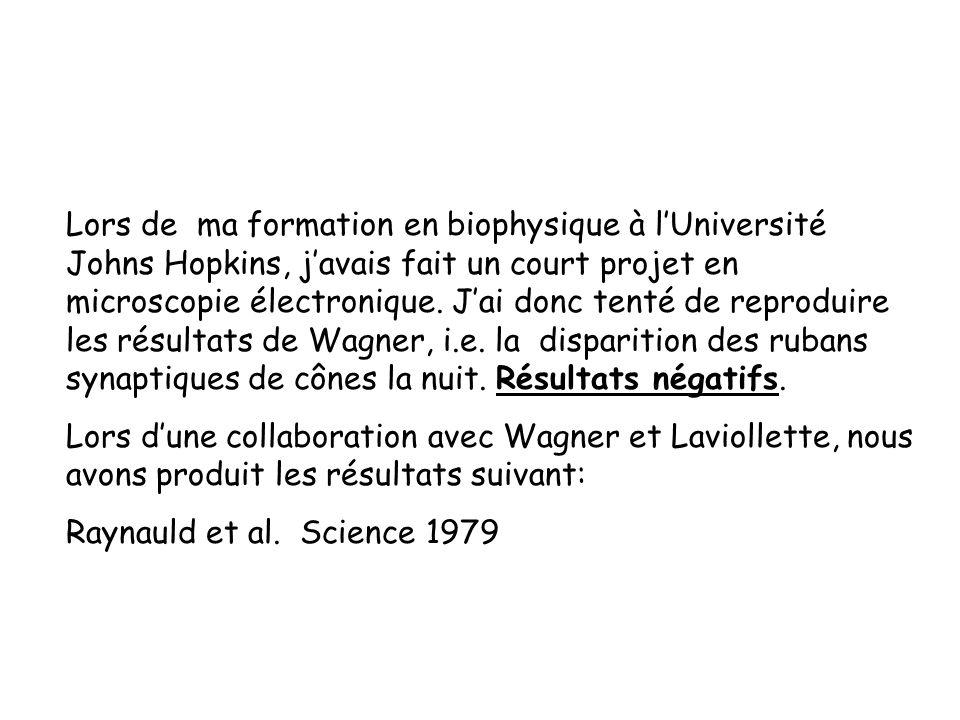 Lors de ma formation en biophysique à lUniversité Johns Hopkins, javais fait un court projet en microscopie électronique. Jai donc tenté de reproduire
