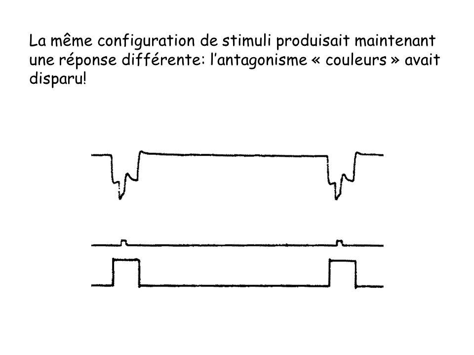 La même configuration de stimuli produisait maintenant une réponse différente: lantagonisme « couleurs » avait disparu!