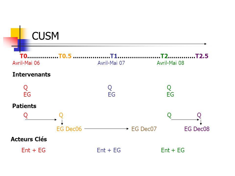 CUSM T0…………….T0.5 ……….………T1………………….T2………..…T2.5 Q Q Q EG EG EG Intervenants Patients Q Q Q Q EG Dec06 EG Dec07 EG Dec08 Acteurs Clés Ent + EG Ent + EG