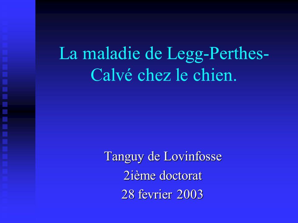 La maladie de Legg-Perthes- Calvé chez le chien. Tanguy de Lovinfosse 2ième doctorat 28 fevrier 2003