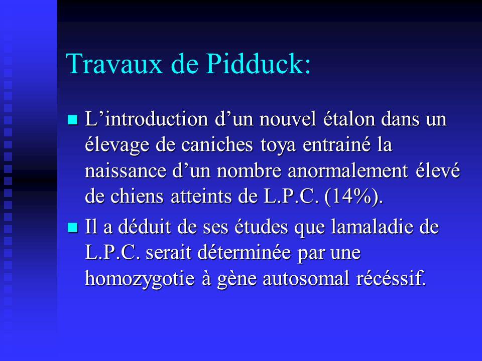 Travaux de Pidduck: Lintroduction dun nouvel étalon dans un élevage de caniches toya entrainé la naissance dun nombre anormalement élevé de chiens att