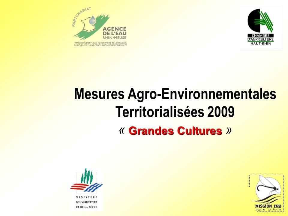 Mesures Agro-Environnementales Territorialisées 2009 Grandes Cultures « Grandes Cultures »