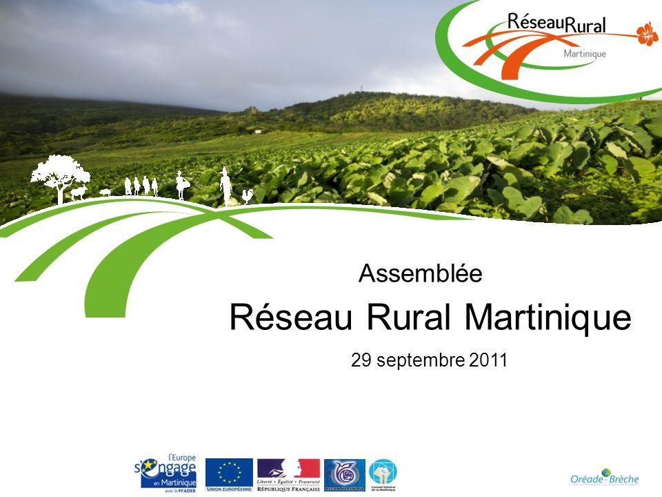 Réseau Rural Martinique 29 septembre 2011 Assemblée