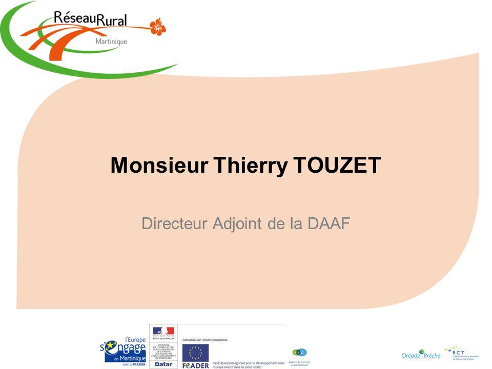Monsieur Thierry TOUZET Directeur Adjoint de la DAAF