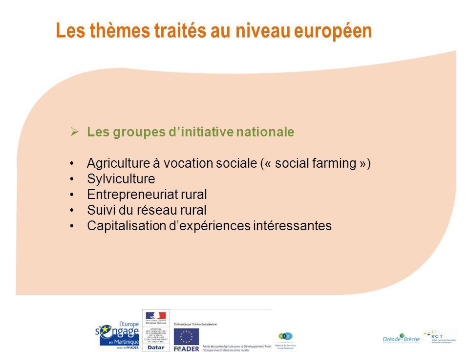 Les thèmes traités au niveau européen Les groupes dinitiative nationale Agriculture à vocation sociale (« social farming ») Sylviculture Entrepreneuriat rural Suivi du réseau rural Capitalisation dexpériences intéressantes