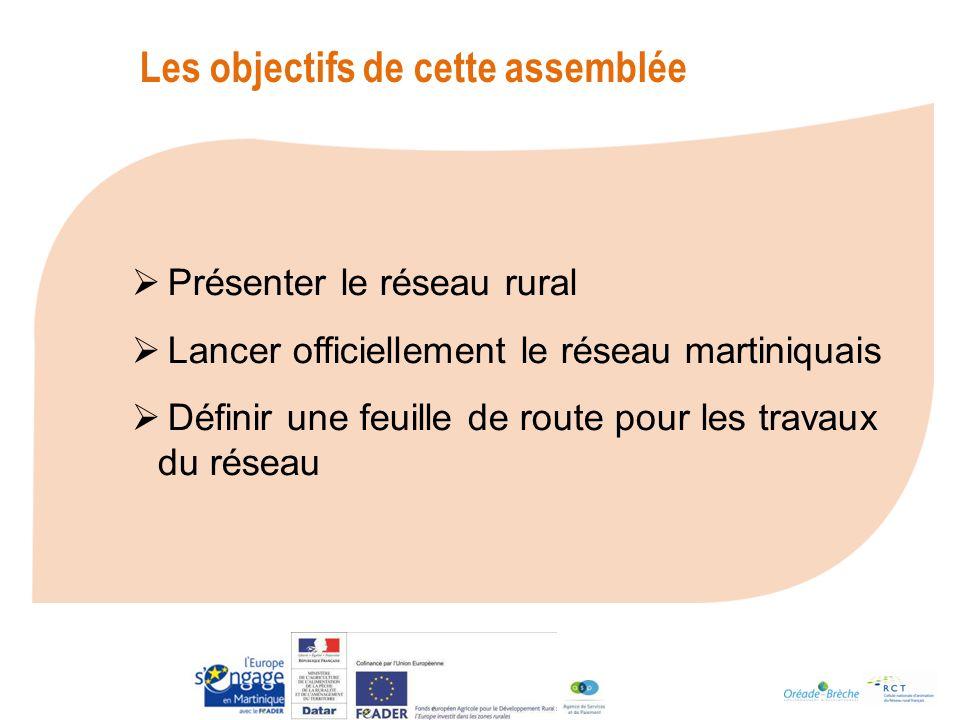La mise en place du Réseau Rural Martinique Une étude de préfiguration, réalisée davril à juin 2011, a permis de proposer : un mode de gouvernance deux thèmes de travail pour la première année une méthode danimation