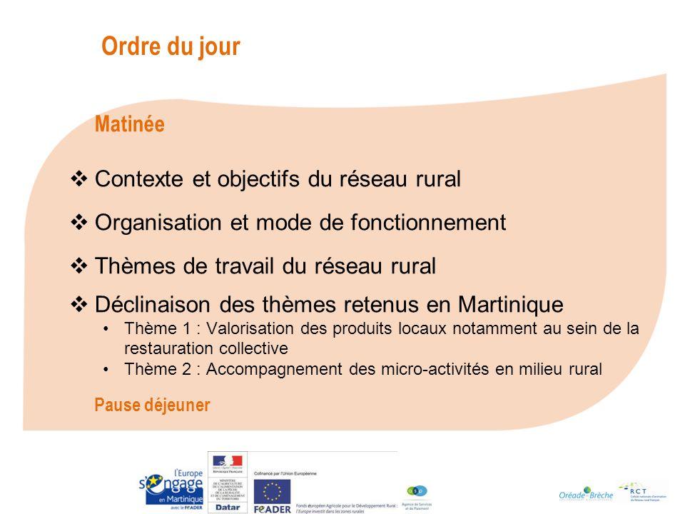 Des sources de financement diverses Micro-crédits - ADIE - Martinique Initiative - Dispositif NACRE Banques Fonds européens Notamment au travers la mesure 312 du PDRM (financement FEADER) : « Aide à la création et au développement des micro-entreprises » Conseil Régional et Conseil Général