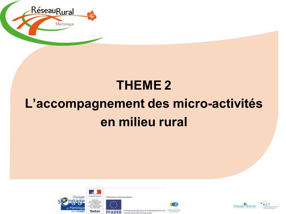 THEME 2 Laccompagnement des micro-activités en milieu rural