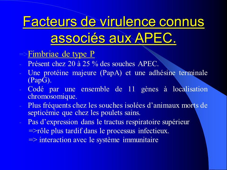 Facteurs de virulence connus associés aux APEC. => Fimbriae de type P - Présent chez 20 à 25 % des souches APEC. - Une protéine majeure (PapA) et une