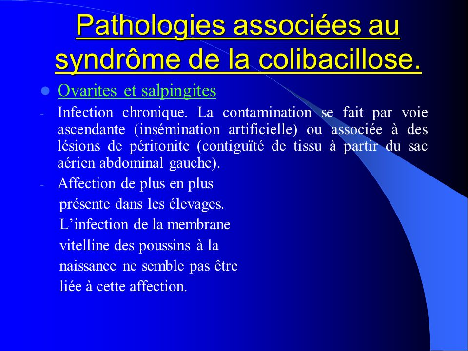 Pathologies associées au syndrôme de la colibacillose. Ovarites et salpingites - Infection chronique. La contamination se fait par voie ascendante (in