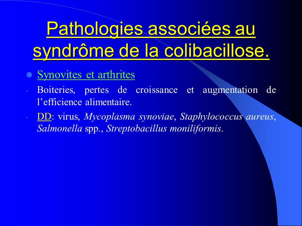 Pathologies associées au syndrôme de la colibacillose. Synovites et arthrites - Boiteries, pertes de croissance et augmentation de lefficience aliment