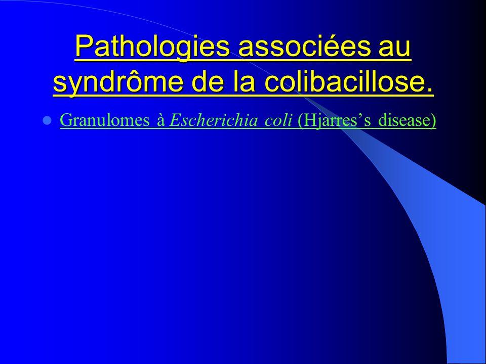 Pathologies associées au syndrôme de la colibacillose. Granulomes à Escherichia coli (Hjarress disease)
