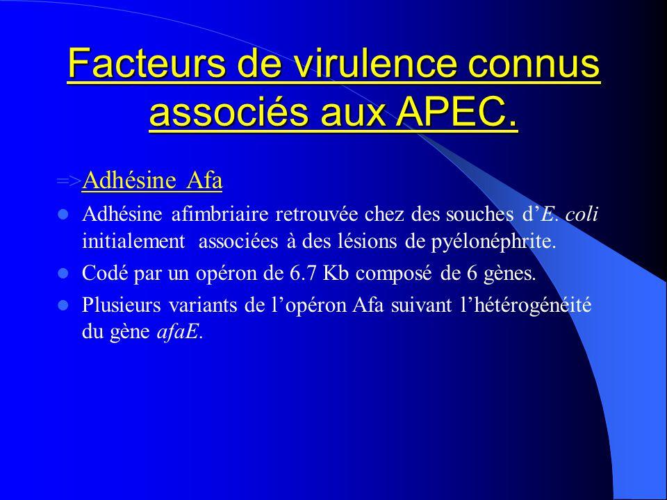 Facteurs de virulence connus associés aux APEC. => Adhésine Afa Adhésine afimbriaire retrouvée chez des souches dE. coli initialement associées à des