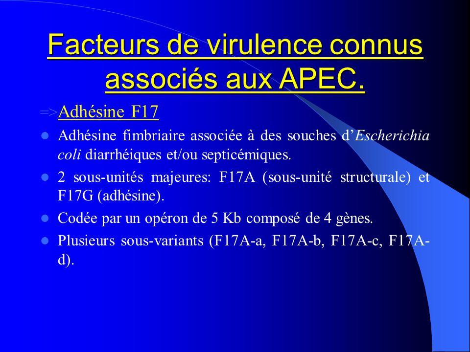 Facteurs de virulence connus associés aux APEC. => Adhésine F17 Adhésine fimbriaire associée à des souches dEscherichia coli diarrhéiques et/ou septic