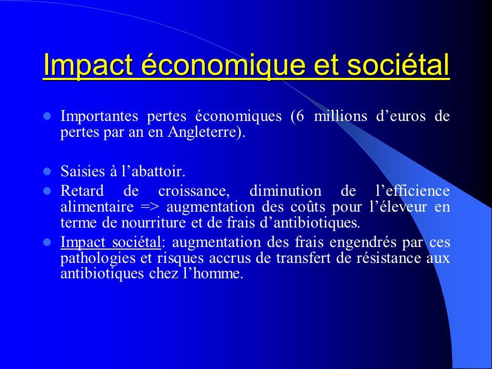 Impact économique et sociétal Importantes pertes économiques (6 millions deuros de pertes par an en Angleterre). Saisies à labattoir. Retard de croiss