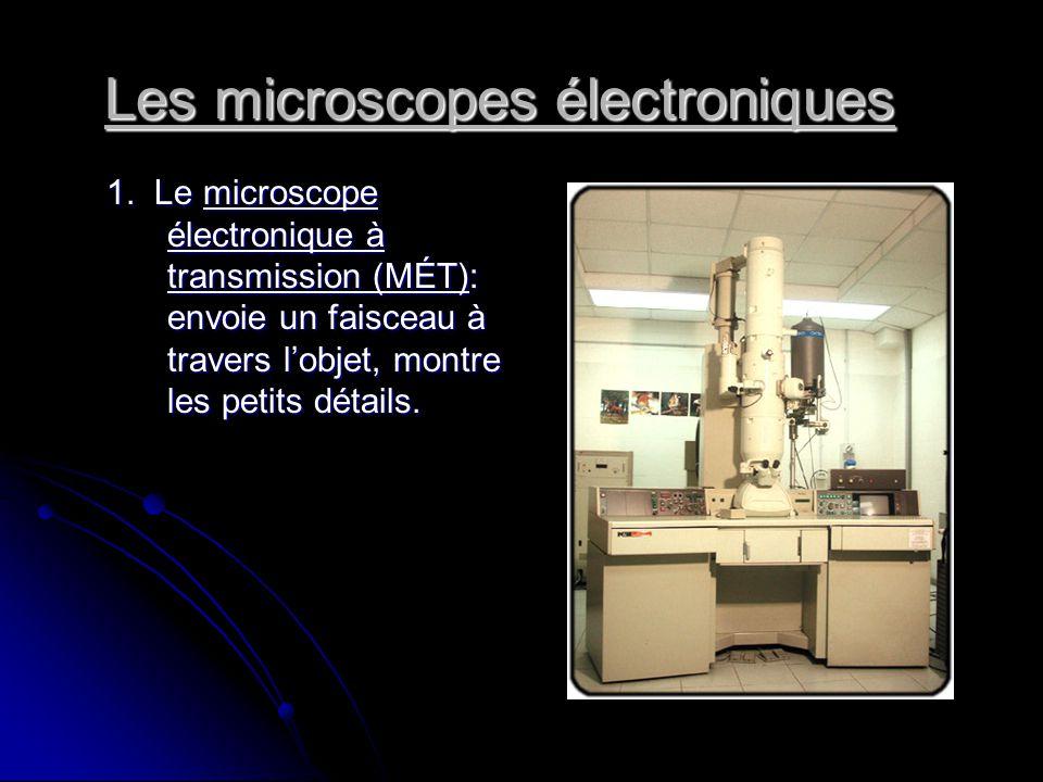 Les microscopes électroniques 1. Le microscope électronique à transmission (MÉT): envoie un faisceau à travers lobjet, montre les petits détails.