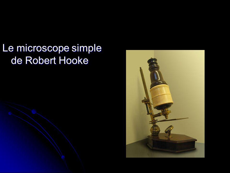 Fameux travail de Robert Hooke : Micrographia