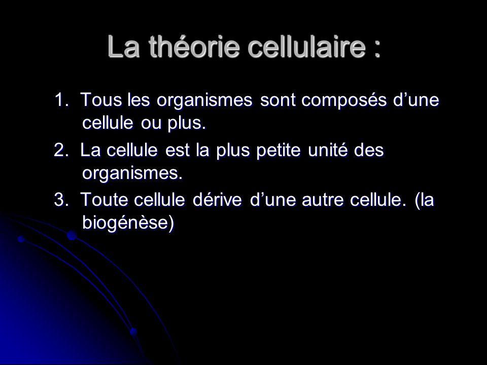 La théorie cellulaire : 1. Tous les organismes sont composés dune cellule ou plus. 2. La cellule est la plus petite unité des organismes. 3. Toute cel