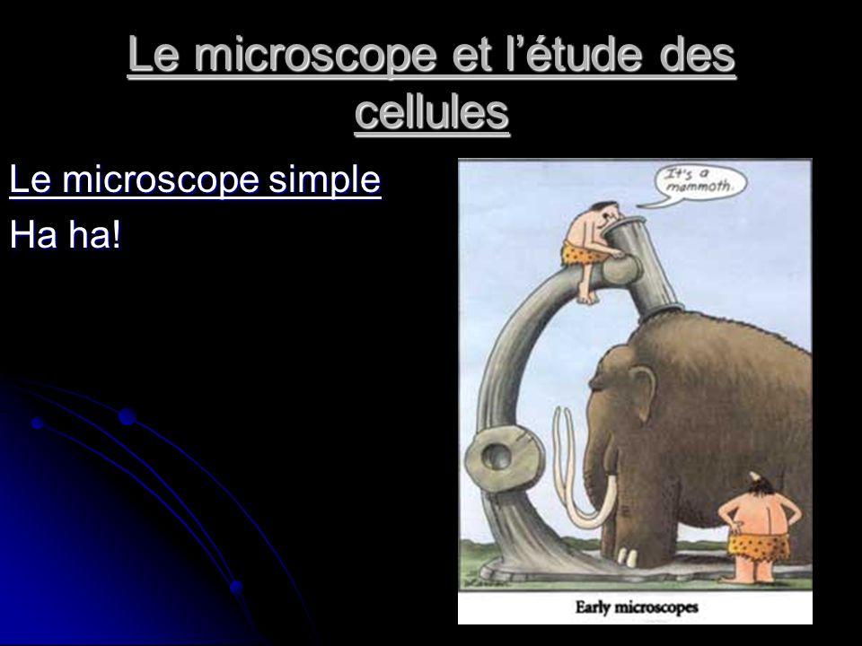 Le microscope et létude des cellules Le microscope simple Ha ha!