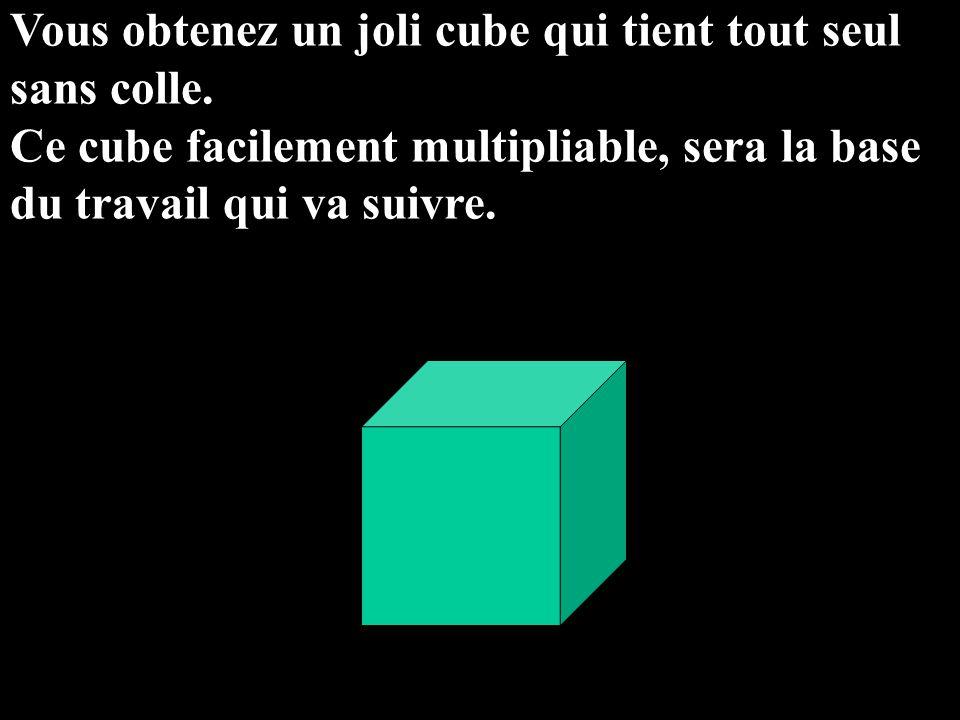 Vous obtenez un joli cube qui tient tout seul sans colle. Ce cube facilement multipliable, sera la base du travail qui va suivre.