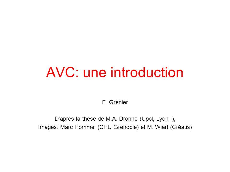AVC: une introduction E. Grenier Daprès la thèse de M.A. Dronne (Upcl, Lyon I), Images: Marc Hommel (CHU Grenoble) et M. Wiart (Créatis)
