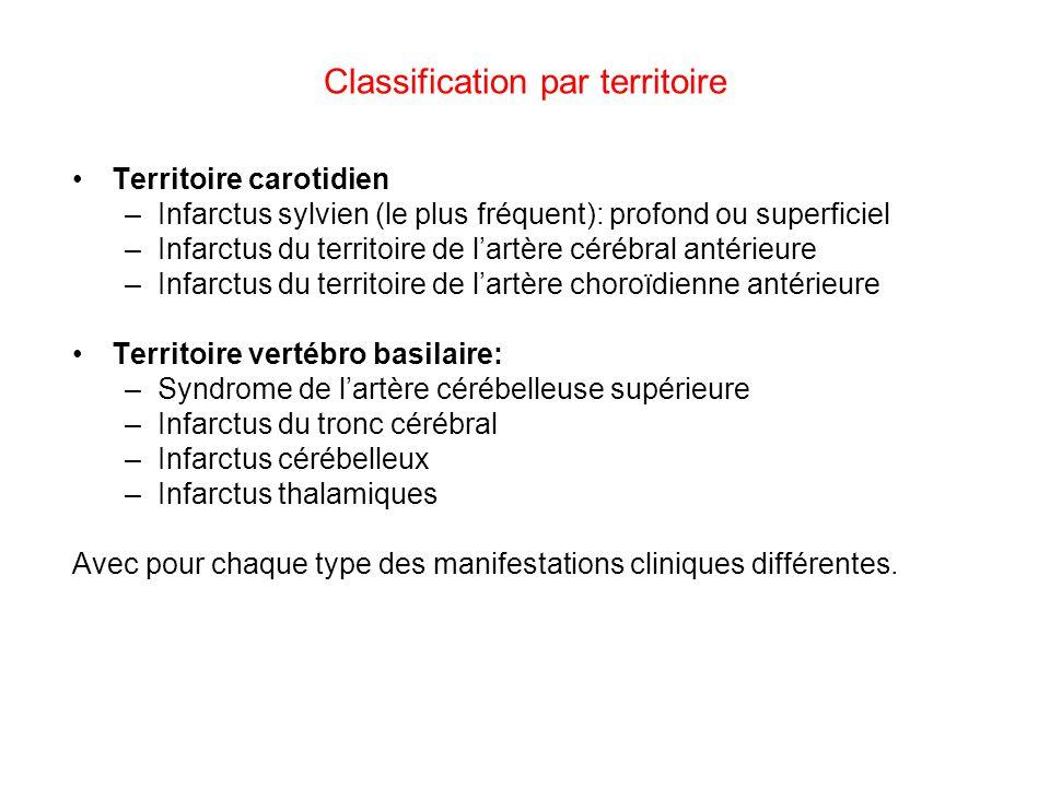 Classification par territoire Territoire carotidien –Infarctus sylvien (le plus fréquent): profond ou superficiel –Infarctus du territoire de lartère