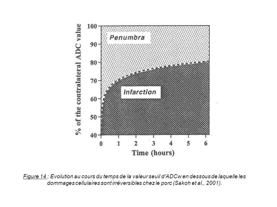 Figure 14 : Evolution au cours du temps de la valeur seuil d'ADCw en dessous de laquelle les dommages cellulaires sont irréversibles chez le porc (Sak