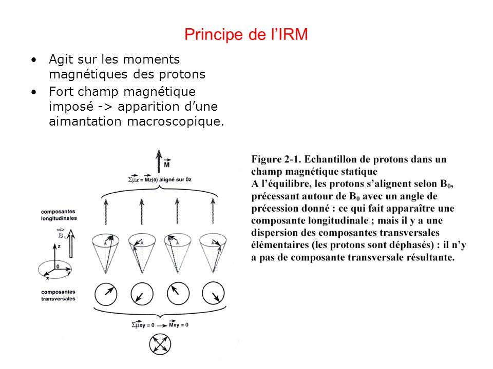 Principe de lIRM Agit sur les moments magnétiques des protons Fort champ magnétique imposé -> apparition dune aimantation macroscopique.