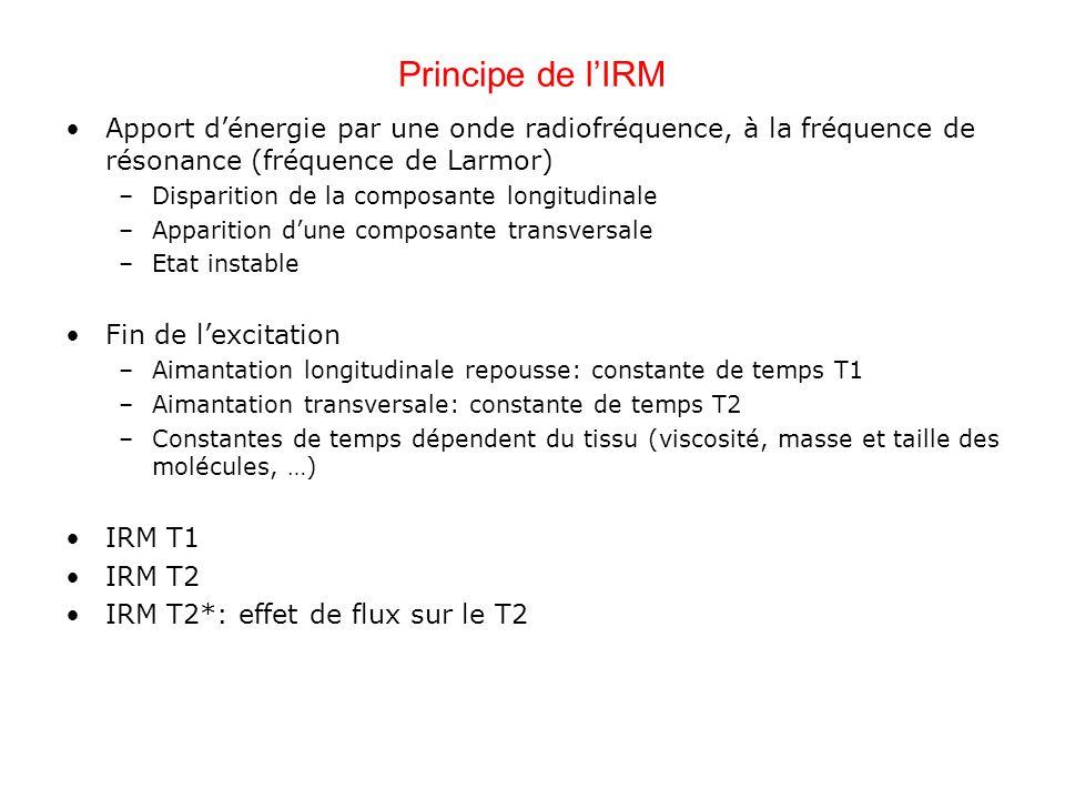 Principe de lIRM Apport dénergie par une onde radiofréquence, à la fréquence de résonance (fréquence de Larmor) –Disparition de la composante longitud