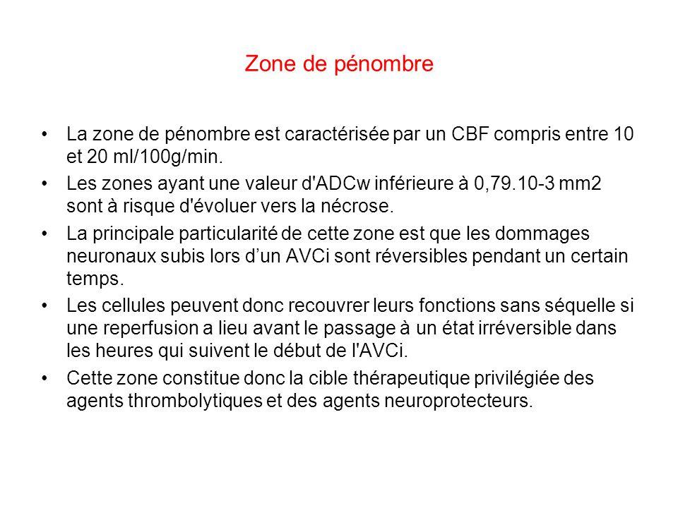 Zone de pénombre La zone de pénombre est caractérisée par un CBF compris entre 10 et 20 ml/100g/min. Les zones ayant une valeur d'ADCw inférieure à 0,
