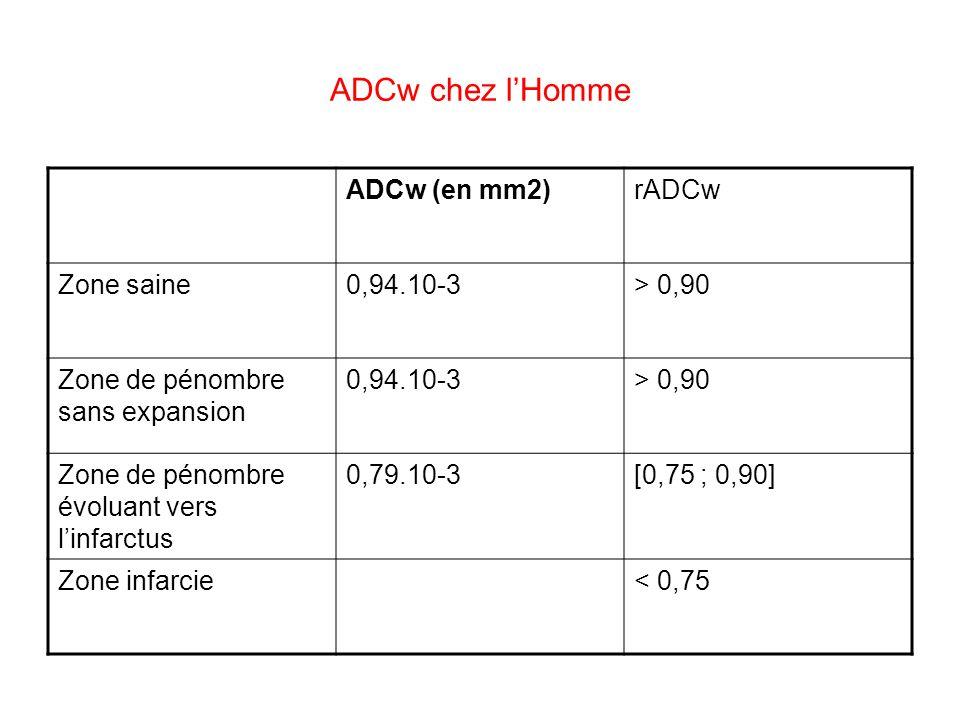 ADCw chez lHomme ADCw (en mm2)rADCw Zone saine0,94.10-3> 0,90 Zone de pénombre sans expansion 0,94.10-3> 0,90 Zone de pénombre évoluant vers linfarctu