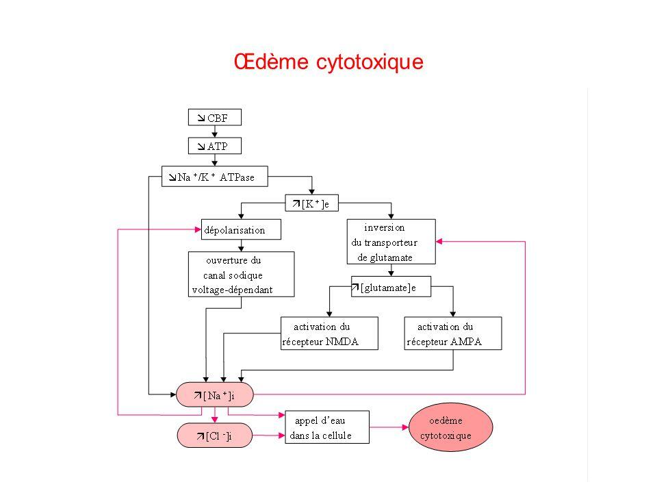 Œdème cytotoxique