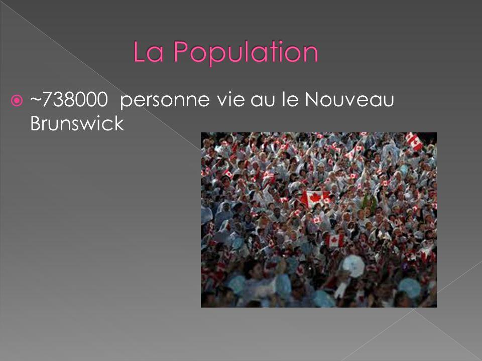 ~738000 personne vie au le Nouveau Brunswick
