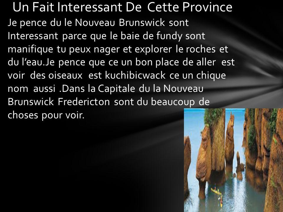 Je pence du le Nouveau Brunswick sont Interessant parce que le baie de fundy sont manifique tu peux nager et explorer le roches et du leau.Je pence qu