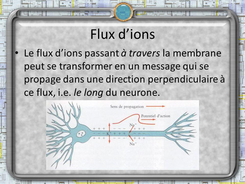 Flux dions Le flux dions passant à travers la membrane peut se transformer en un message qui se propage dans une direction perpendiculaire à ce flux,