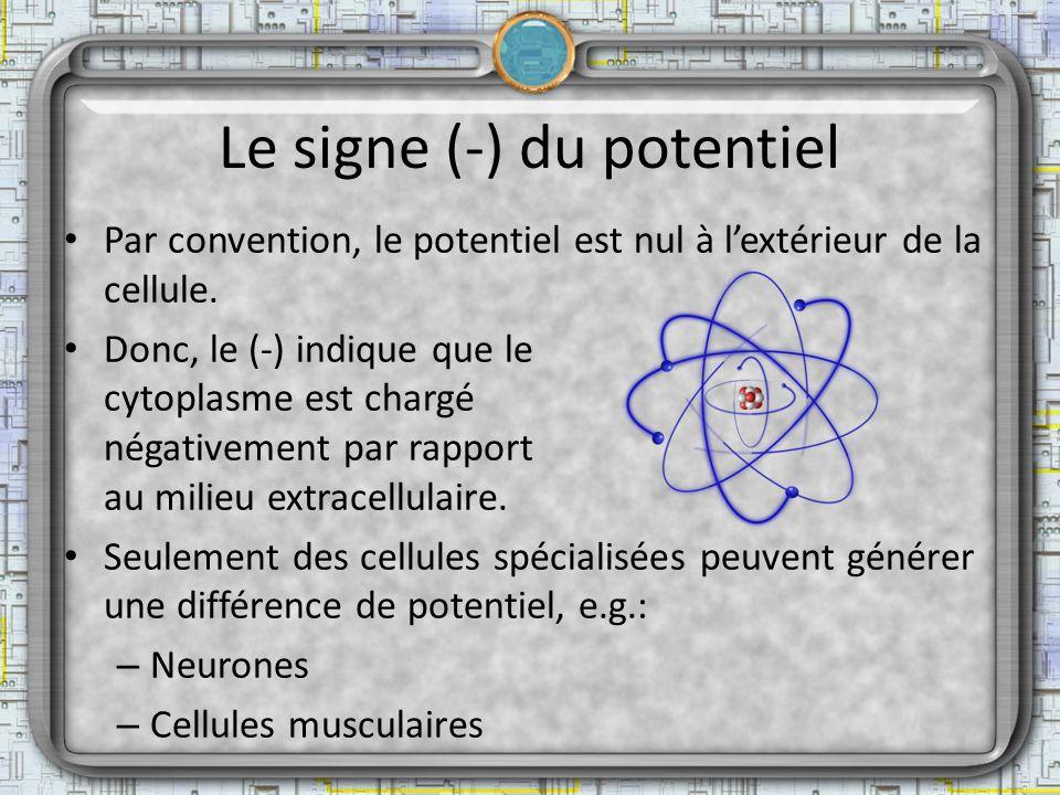 Le signe (-) du potentiel Par convention, le potentiel est nul à lextérieur de la cellule. Donc, le (-) indique que le cytoplasme est chargé négativem