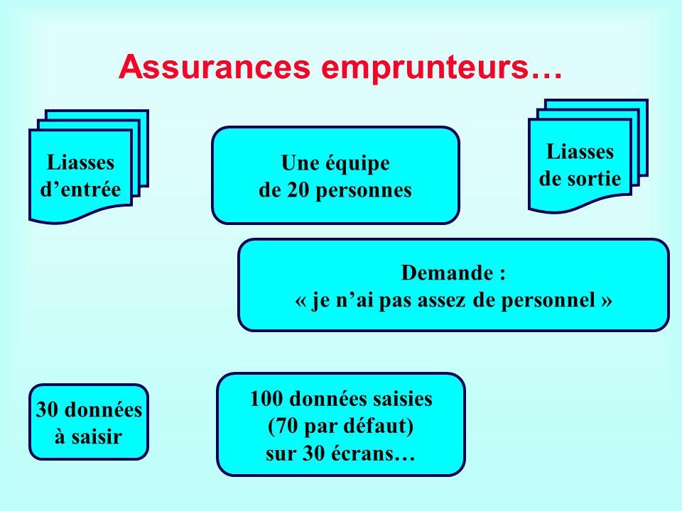 Assurances emprunteurs… Une équipe de 20 personnes Liasses dentrée Liasses de sortie 30 données à saisir 100 données saisies (70 par défaut) sur 30 éc