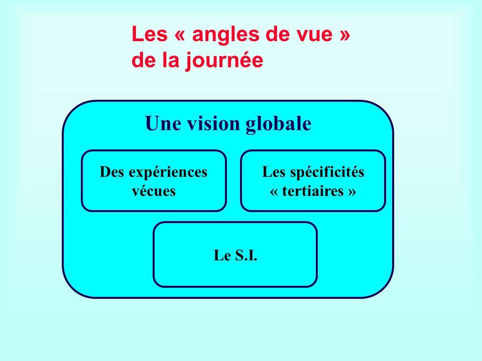 Les « angles de vue » de la journée Une vision globale Les spécificités « tertiaires » Le S.I. Des expériences vécues