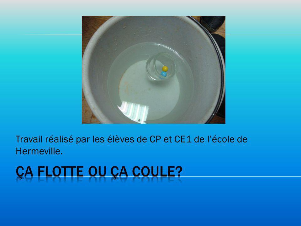 Travail réalisé par les élèves de CP et CE1 de lécole de Hermeville.