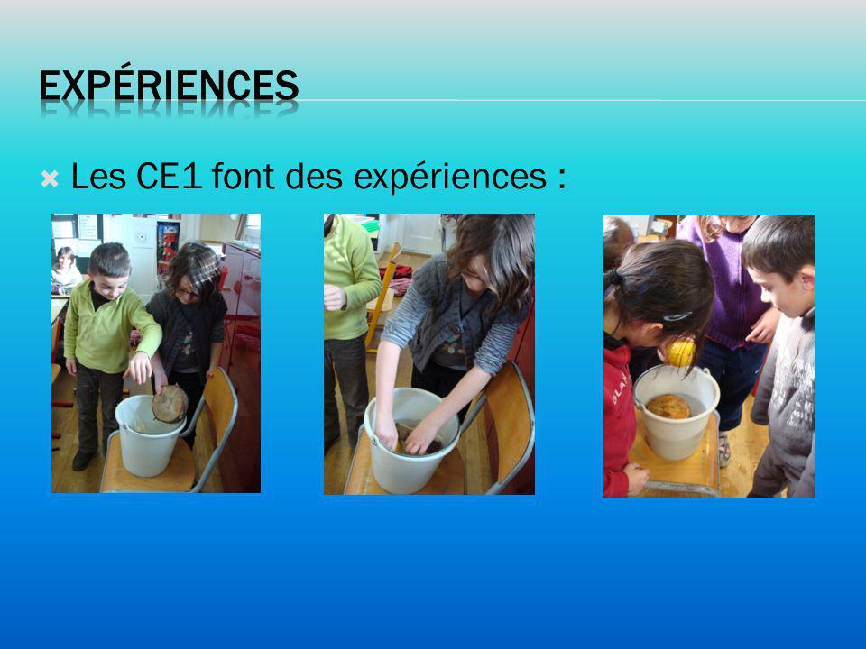 Les CE1 font des expériences :