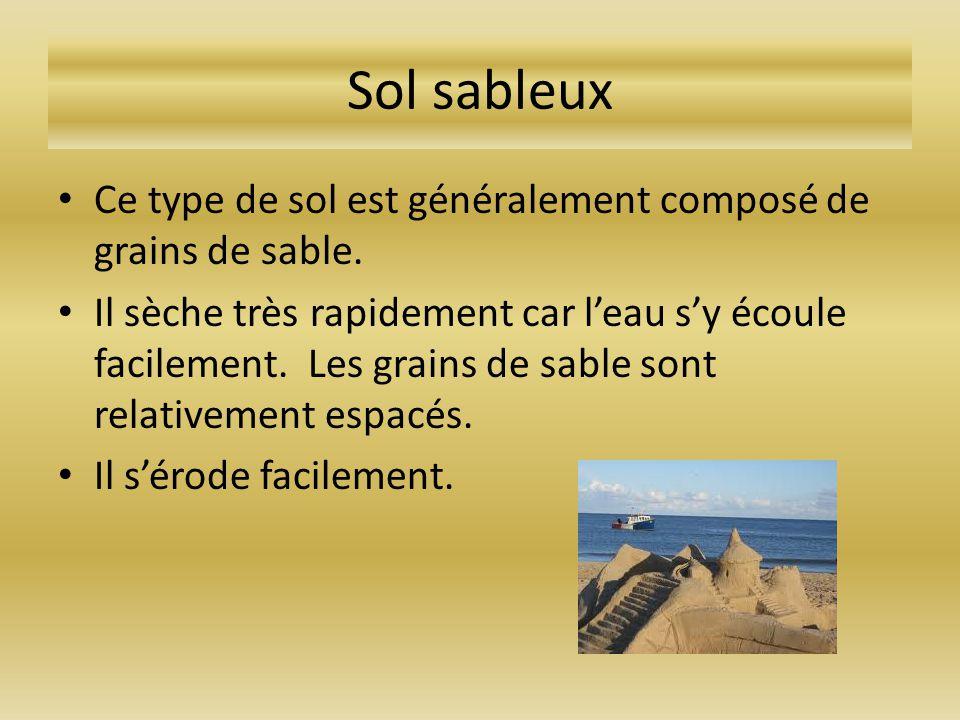 Sol sableux Ce type de sol est généralement composé de grains de sable. Il sèche très rapidement car leau sy écoule facilement. Les grains de sable so