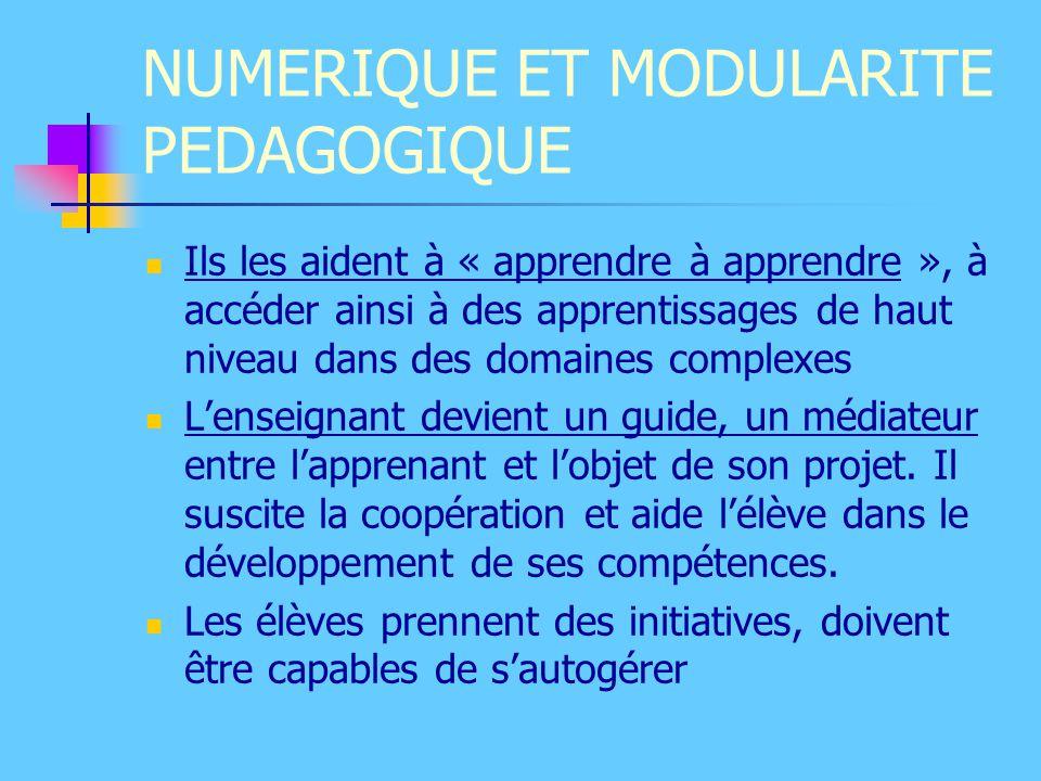 NUMERIQUE ET MODULARITE PEDAGOGIQUE Ils les aident à « apprendre à apprendre », à accéder ainsi à des apprentissages de haut niveau dans des domaines
